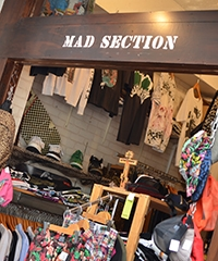 MAD SECTION